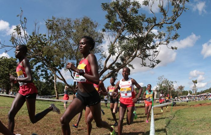 Mondial de cross : la course seniors femmes en photos