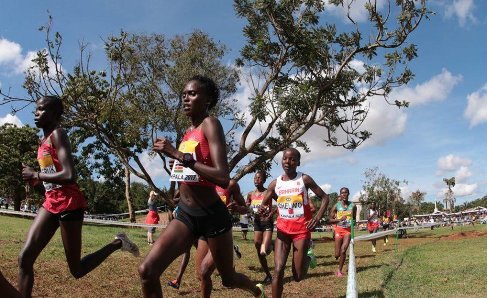 Mondial de cross : la course seniors femmes en photos