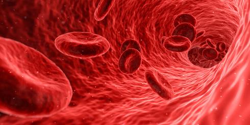 Le gène HFE, cause de profils sanguins anormaux chez les skieurs ?