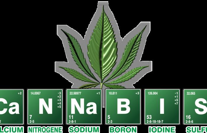 Dopage: le cannabis, toujours interdit malgré sa large légalisation